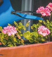 Samolepiaca sieťka proti hmyzu so zipsom čierna